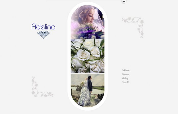 Adelina - Responsive Unique Theme