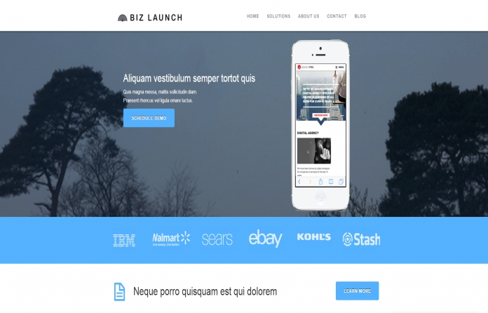 Business Launcher Pro
