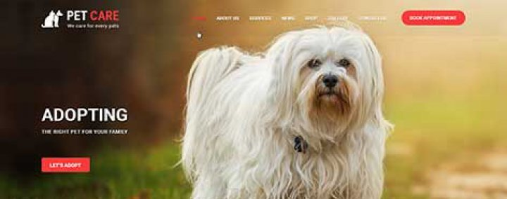 SKT Animal WordPress theme