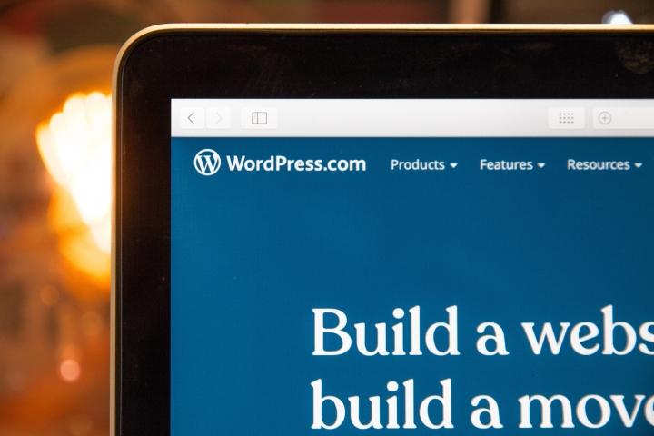Minimalist WordPress Themes For Business Website